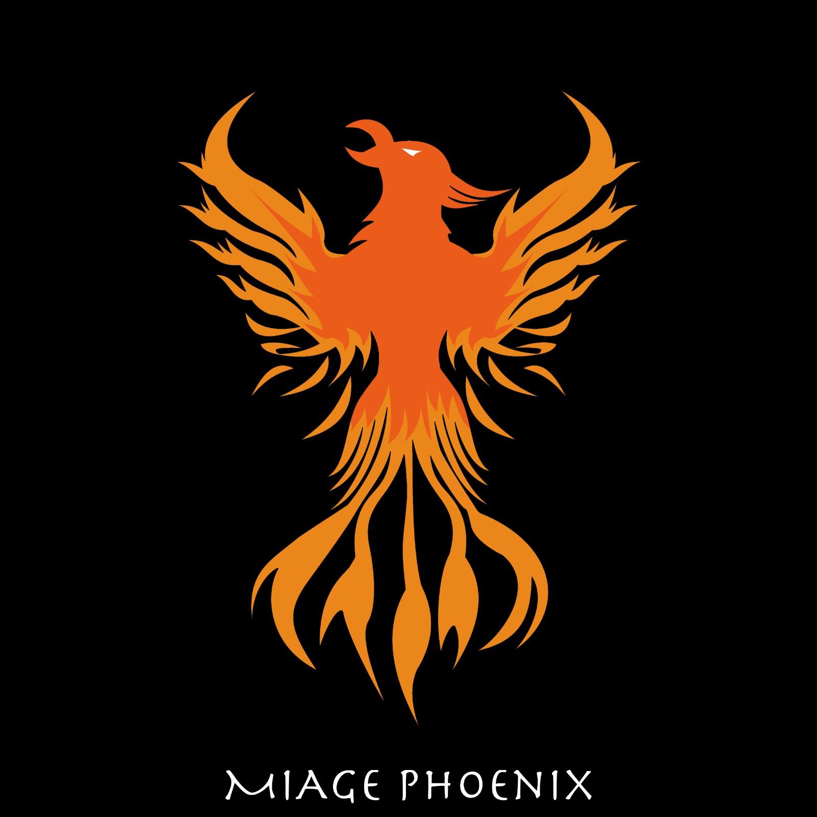 L'emblème de notre équipe